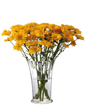Chrysanthemum Vase