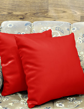 Leatherette Red Cushions